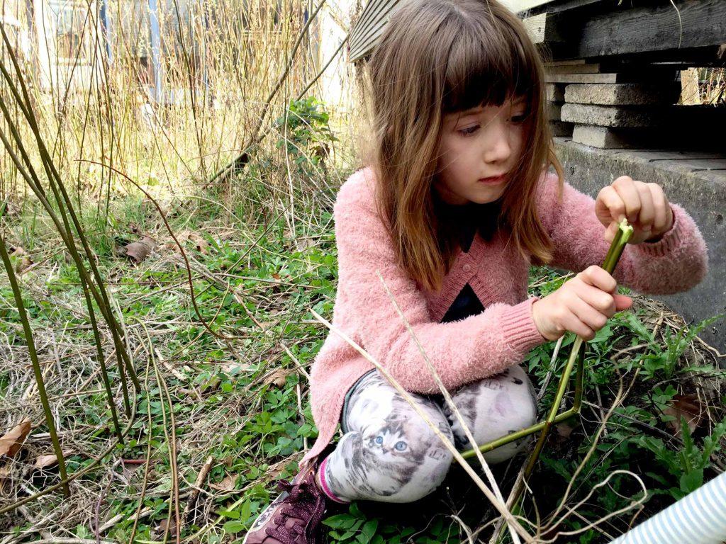 kidsworkshop De Ceuvel Natuurontdekkers